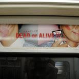 dead or alive in Osaka, Osaka, Japan