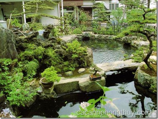 hồ koi sân vườn đẹp