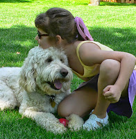 Gorgeousdoodles Jake is a big family love dog, lives in IL.