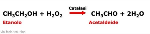 catalasi