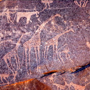 Gilf_Kebir_jan_2007_rock_carvings.jpg