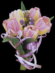 tulip clipart (9)