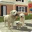 Download Android Game Dog Sim Online for Samsung