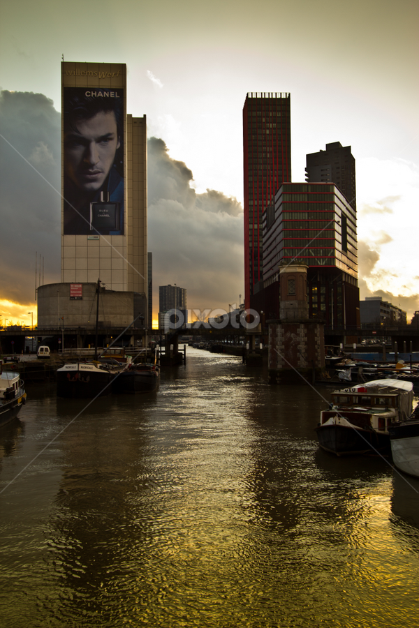 Rotterdam by Merina Tjen - Lim - City,  Street & Park  Skylines ( skyline, rotterdam, cloud, sunlight, evening )