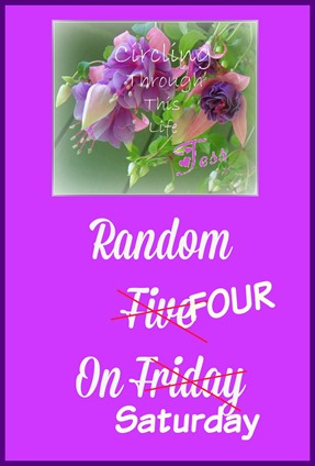 Random Four on Saturday ~ The Doxaxon Edition at Circling Through This Life