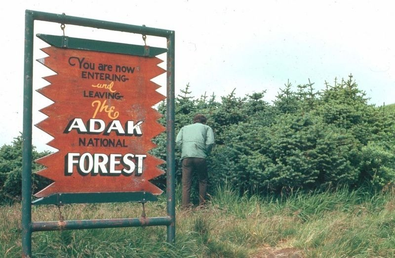 adak-national-forest-1