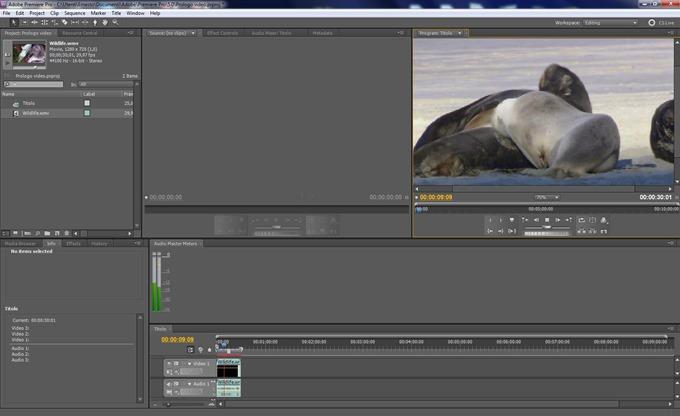 adobe-premiere-interfaccia