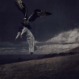 Forced Flight by Carrie Lopez - Digital Art People ( stormy, eerie, abducted, fine art, carried, storm, sky, painterly, wings, woman, dark, raptor, taken, surreal, misery, clouds, muted, vintage, whimsical, horizon, self portrait, bird, field, flight, textured, feathered, conceptual )