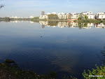 Panorama vers la rive est