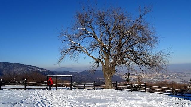 Bunloc-Piatra-Mare-03-rw.jpg