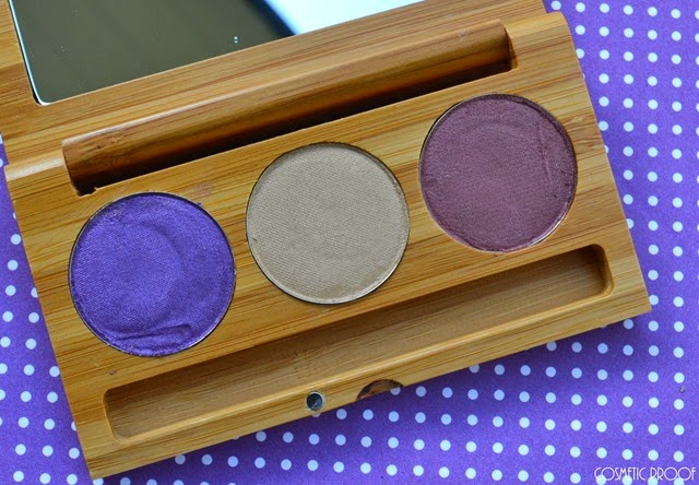 Elate Clean Cosmetics Eyeshadow Review Swatches (2)