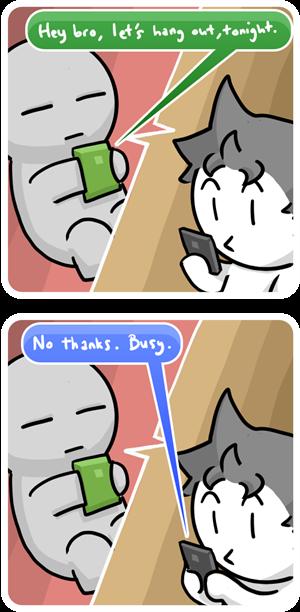 309 - 05 06