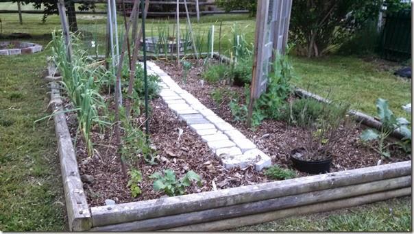 Garden 05 (4)