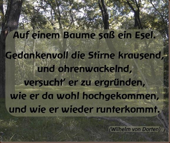 DE_Q_Esel_suf_Baum