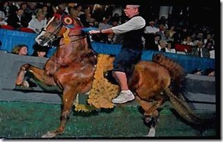 KY horse park 140