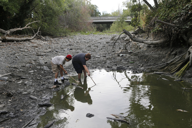 Carlos Gomez, 13, left, and Josh Roberts, 15, both of San Jose, explore the dried up Guadalupe River near Santa Clara Street in San Jose, Calif., on Monday, 11 July 2015. The two friends came across a pool of water where many of the remaining carp in the river were trapped and dying. Photo: Jim Gensheimer / San Jose Mercury News