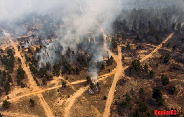 Aerial view of forest fire in Siberia, 23 June 2015. An estimated 9,300 hectares of Siberia woodland was on fire, with fears it would only spread with further hot weather forecast over the next few days. Photo: Copter03
