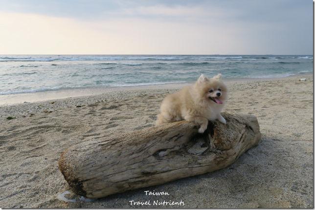 小琉球威尼斯海灘 (4)