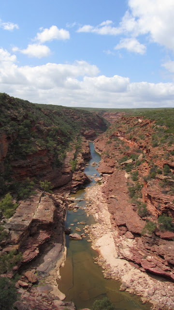 The Z-Bend Gorge in Kalbarri National Park.