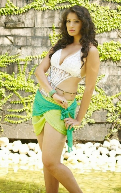 Lakshmi rai hot pics (1)