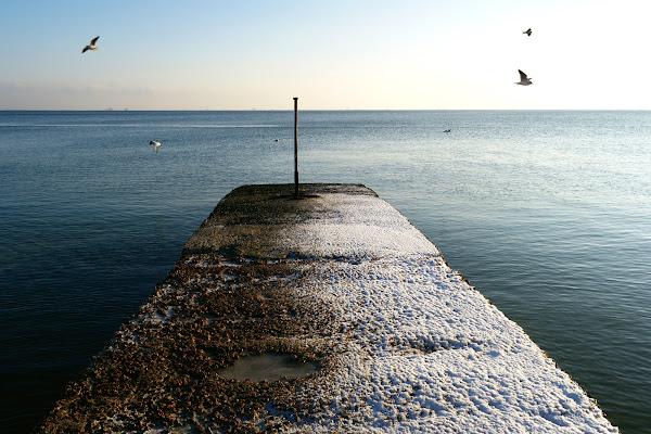 одесса зима пирс черное море