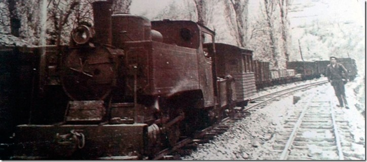 Tren minero  de Trubia