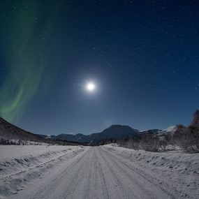 Aurora and moon by Benny Høynes - Landscapes Starscapes ( moon, snow, northern lights, aurora borealis, road, moonlight, norway )