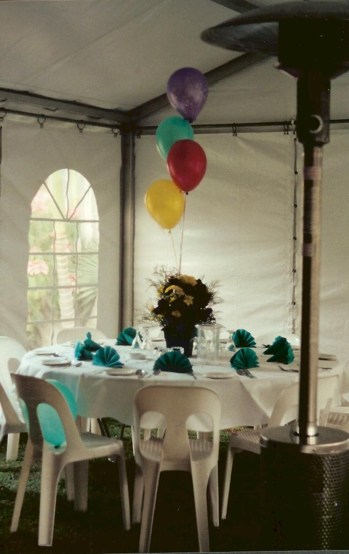 tent, party tent, wedding