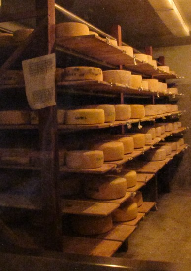 Rockhill Creamery Cheese Cave