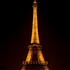 Tour d'Effiel a Noire by Talbot Brooks - Buildings & Architecture Public & Historical ( paris, eiffel tower, tower, eiffel, france )