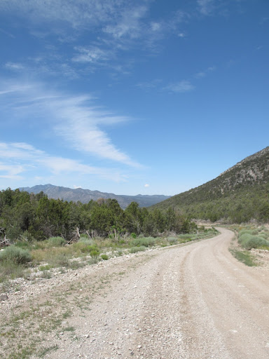 Road up to Patterson Pass.