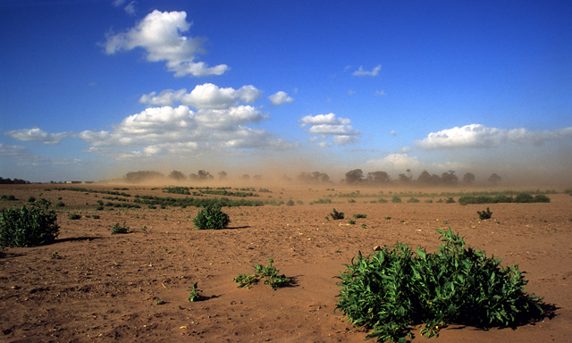 Soil erosion takes effect on Suffolk farmland in the UK. Photo: Alamy