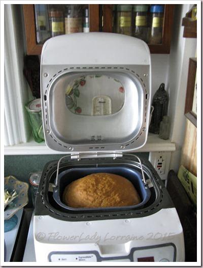 09-15-oatmeal-bread3