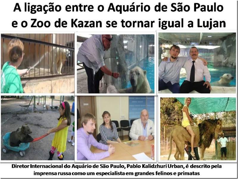 aquariosp_lujan_kazan