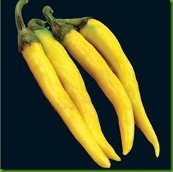 Cayenne Gold