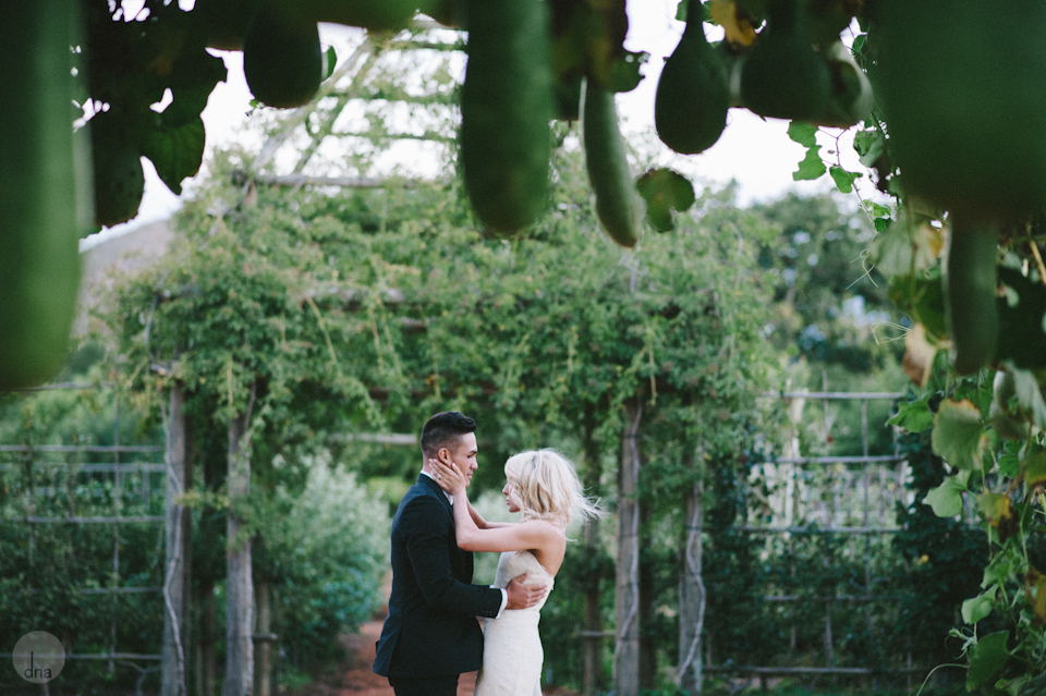 Paige and Ty wedding Babylonstoren South Africa shot by dna photographers 342.jpg