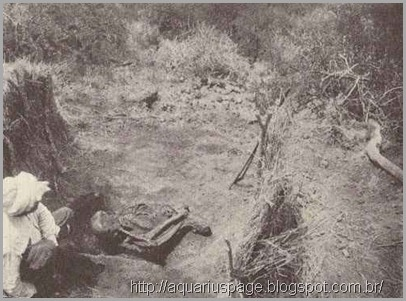 esqueleto-de-Hans-Reck