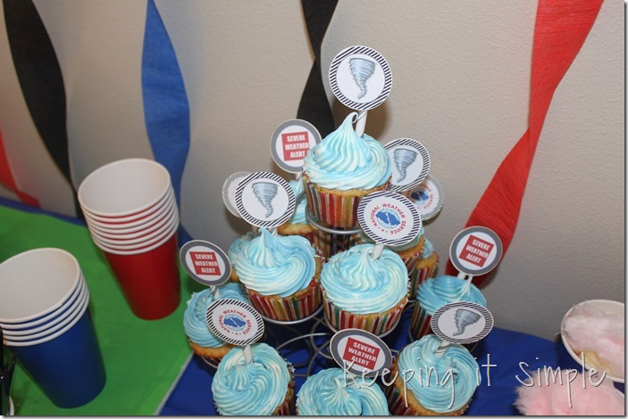 boy-birthday-party-idea-natural-disaster-party (8)