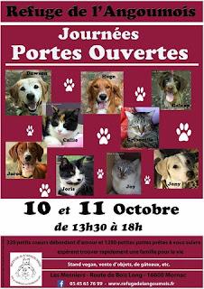 French Village Diaries book review Finding Shelter Emma Lee animal rescue Poitou-Charentes Refuge de l'Angoumois