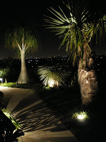 Dramatic Shadow Lighting and path lighting with city view in background Tustin CA