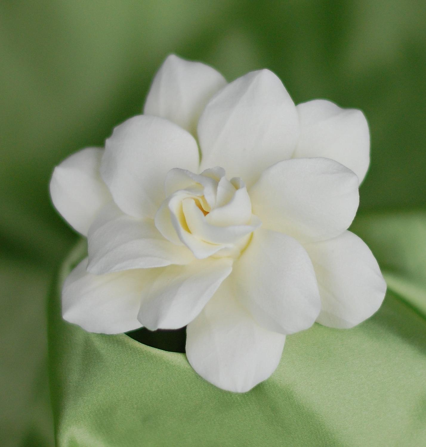 Gardenia Bridal Hair Pin