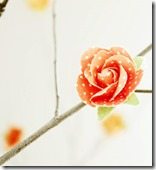 Easiest paper blossom branches