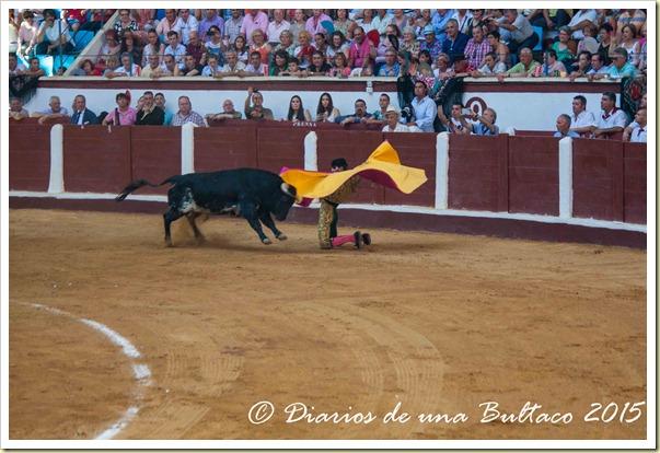 Toros Feria 2015-9846