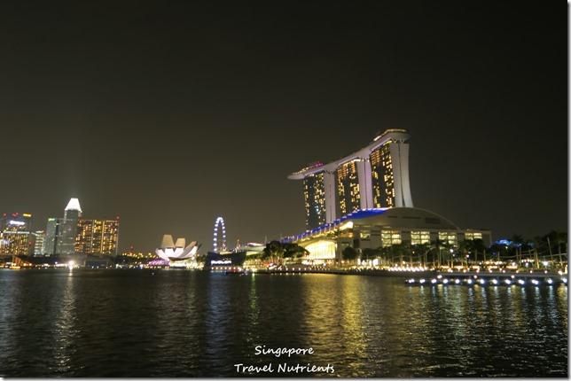 新加坡河岸 老巴剎 (8)