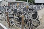 Bikes at Tohoku U.