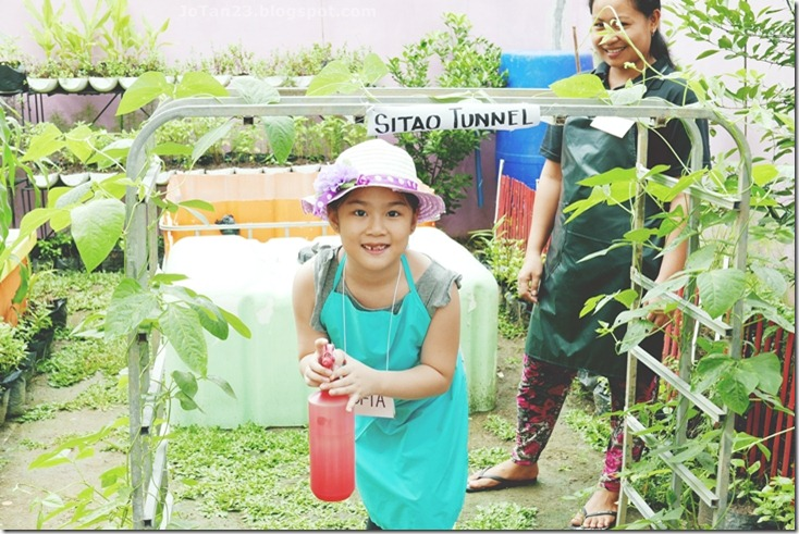 Jensen Kinder Farm Organic Farming for Kids and Adults Quezon City - jotan23 (16)