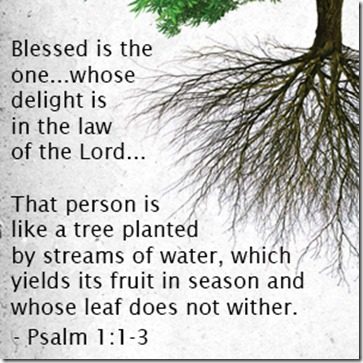 psalm-1-1-3