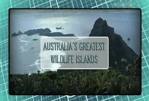 Wspania�a przyroda australijskich wysp / Australia's Greatest Wildlife Islands (2006) PL.TVRip.XviD / Lektor PL