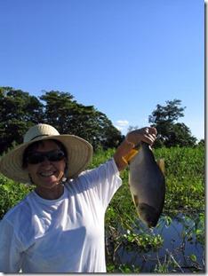 passo-do-lontra-pesca-pacu