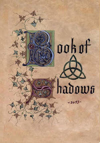 Cover of Sasha Fierce's Book The Book Of Shadows